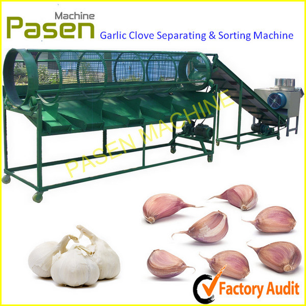 Australia Market Popular Garlic Skin Removing Machine Garlic Peeler Machine