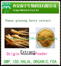 Ginsenoside 4% 30% 80% by HPLC / UV 100% nature product Panax Ginseng Root Extract Powder