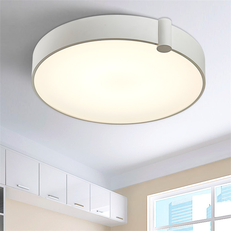 Modern Contemporary Replica Aluminum Plate Ceiling Lamp Led 30W Round Plate Lighting with Acrylic Cover for Hotel Bedroom Home