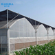 Galvanized Tube Structure Multi-Span Greenhouse Used for Growing Plantings