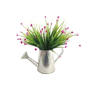 Watering Cans for Metal Crafts Galvanized Garden Plant Watering Can Decor Flower Planter Pot For Sale