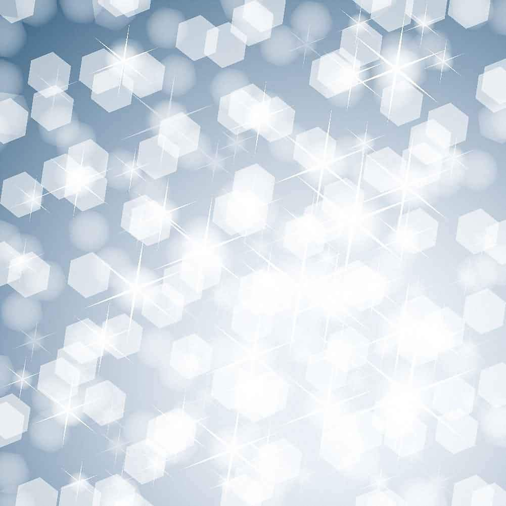GladsBuy Snowflake Patterns 10 x 20 Computer Printed Photography Backdrop Textures Theme Background DT-SL-058