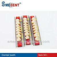 Acrylic Teeth 3-layer / Full Mouth