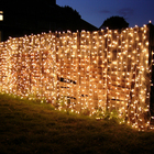 Christmas Outdoor Twinkling Stars RGB Color Changing Fairy led string fairy lights decoration led curtain light