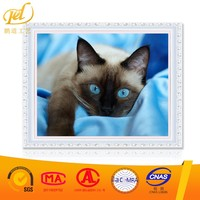 Cat with Blue Eyes Images Artistic Wholesale Diy Oil Painting Paint Art On Canvas By Numbers for Home Decoration a251