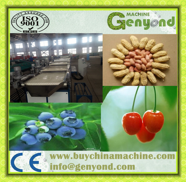 peanut cleaning and screening machine