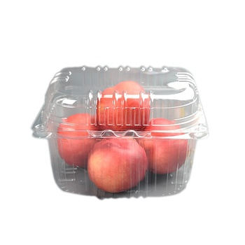 Disposable Salad Fruit Packaging Container glass lunch For Blueberry