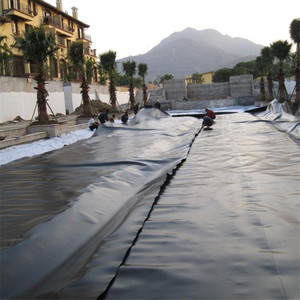 Pond liner used Smooth Surface HDPE geomembrane,hdpe geomembrane sheet