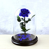 dark blue preserved rose in glass dome