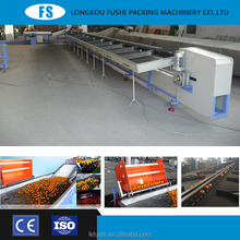 fruits and vegetables automatic citrus fruit washing waxing and sorting machine