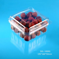clear square plastic hinged food packaging fruit container