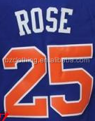 Derrick Rose #25 New York Blue Stitched National Basketball Jersey