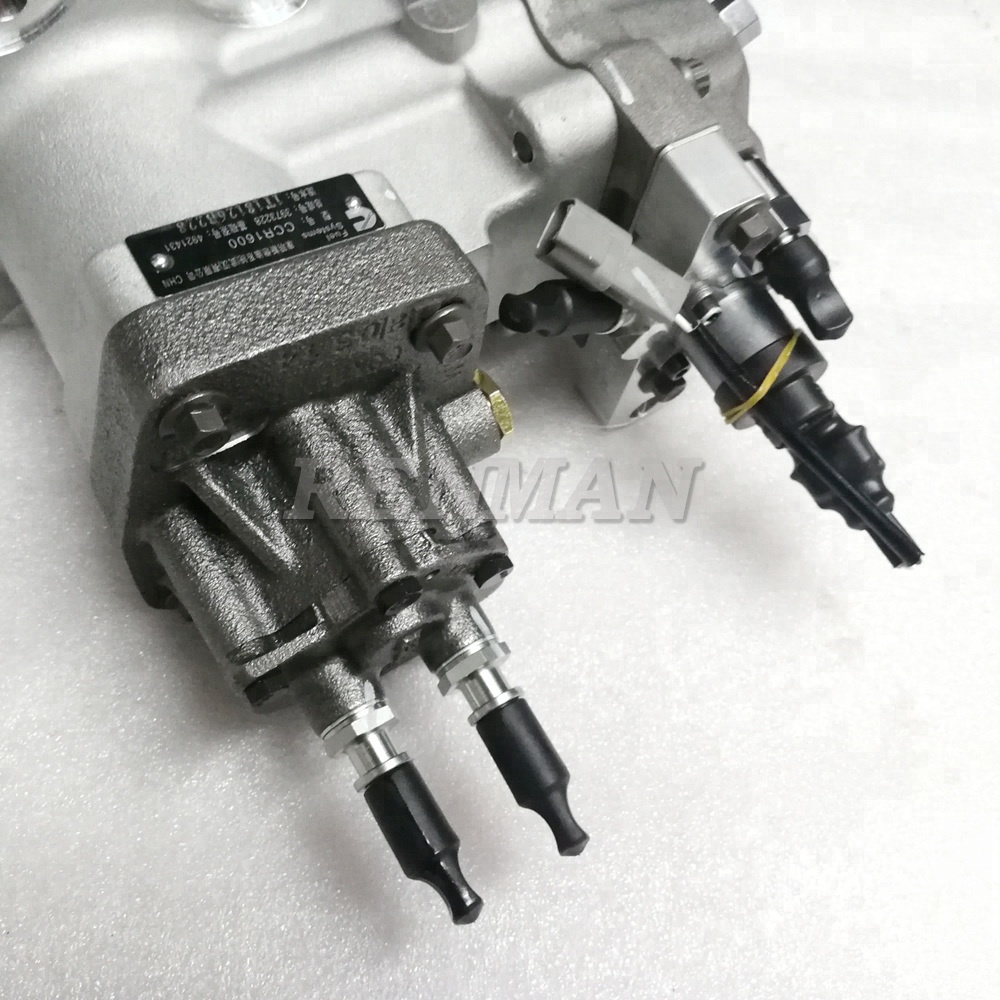 China Cummins Fuel Pumps Manufacturers And M300 Filter Suppliers On