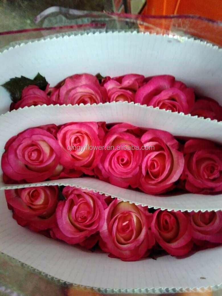 Impor Bunga Potong Segar Hitam Mawar Buy Product On Alibabacom
