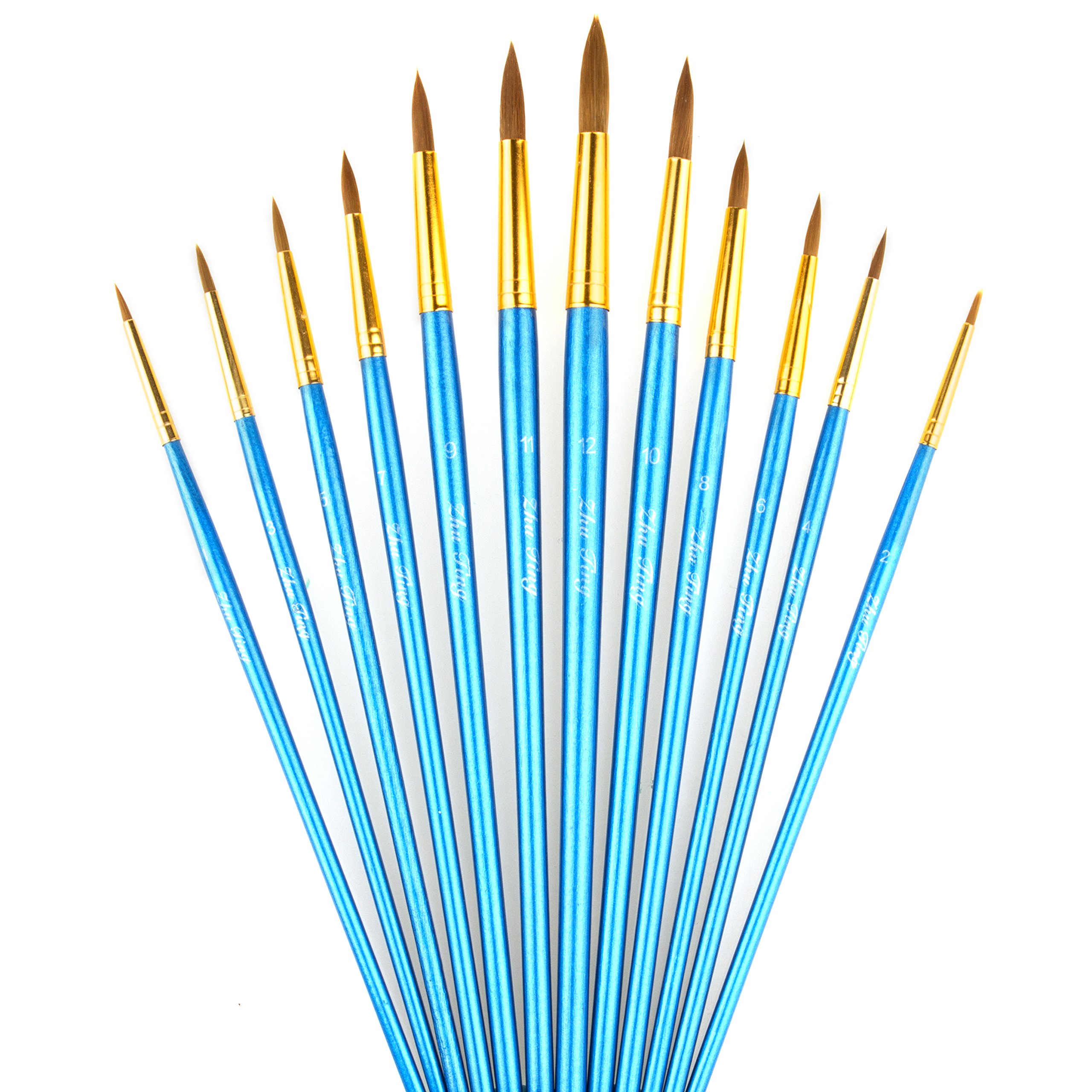StarVast Painting Brushes, 12pcs Professional Round Pointed Paint Brush Set for Watercolor/Oil/Acrylic/Crafts/Rock/Face Painting and Gouache - Blue