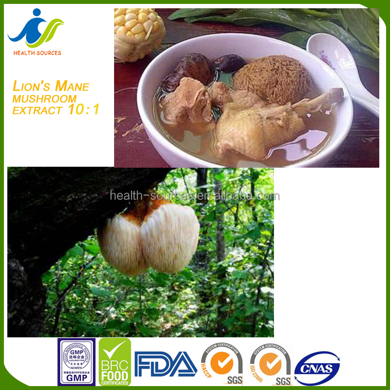 Factory supply Lion's Mane Mushroom for regulating blood sugar