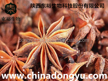 Pure Ferula Hermonis Extract Powder with Best Quality and Competitive Price