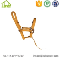 Pressure Training Horse With Lead Rope Horse Halter