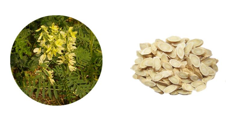 Astragalus Extract powder Latin Name Astragalus Membranaceus Active Ingredients Astragaloside IV Cycloastragenol and Astragalus Polysaccharide.