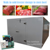 Walk in cold freezer storage to store beef with low temperature