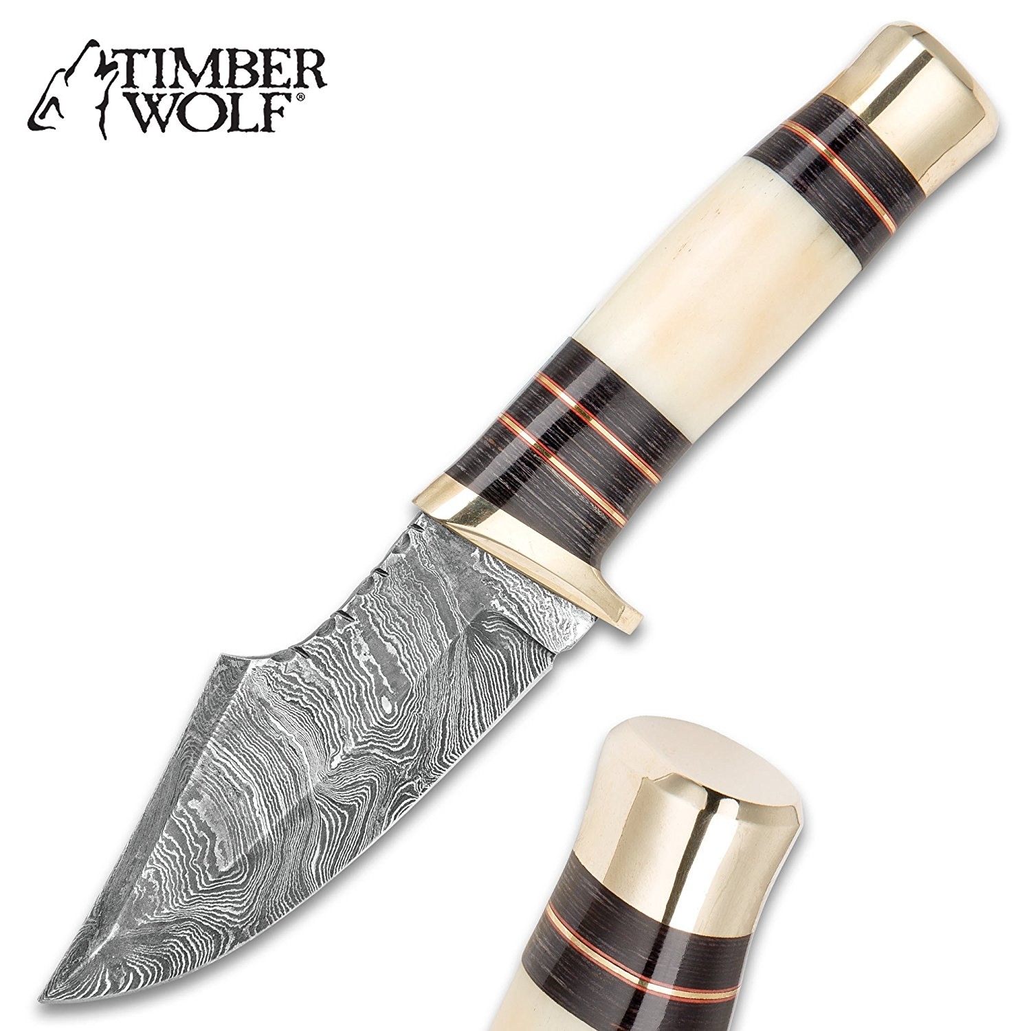 Timber Wolf Foxclaw Skinner - Damascus Steel Fixed Blade with Scalloping - Genuine Bone, Pakkwood Handle - Brass Spacers, Guard, Pommel - Leather Sheath - Skinning, Camping, Hunting, Outdoors