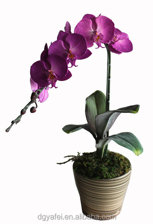 The Real Touch Cheap Artificial Potted Flowers And Plants For ...