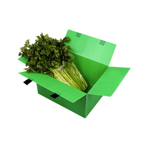 Transport plastic box for vegetables,food packing box