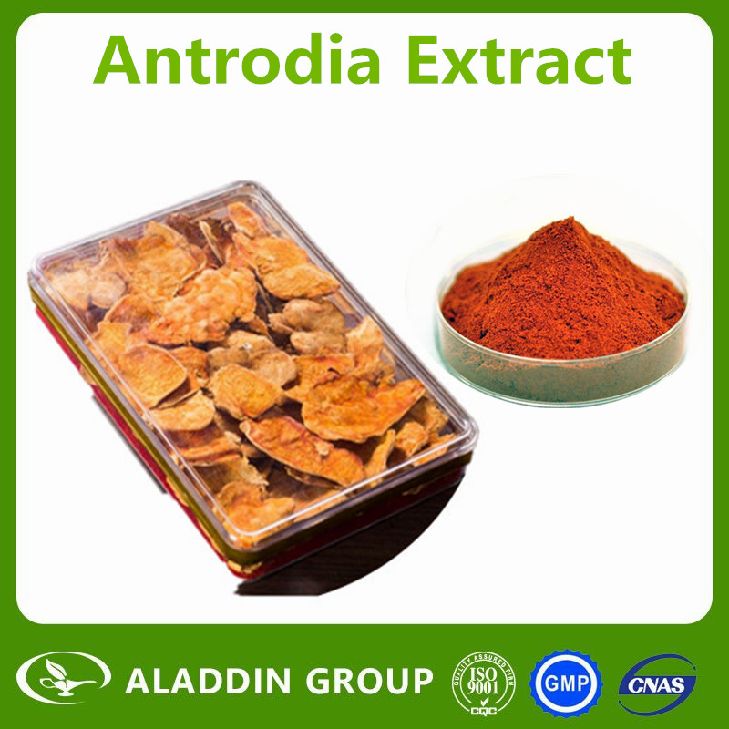 100% PURE NATURE Antrodia camphorata/The forest ruby Extract/Polysaccharide/Triterpene compounds