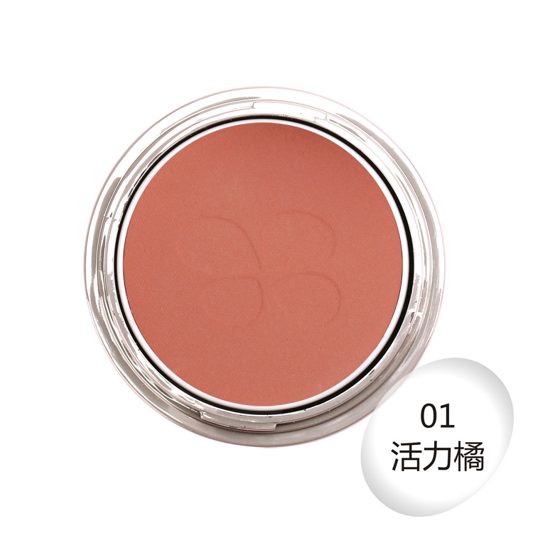 Private Label Blusher Best Makeup Cosmetic