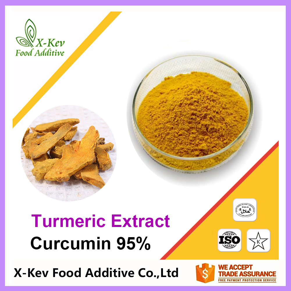 Natural Organic 95% Curcumin Turmeric Extract For Curcumin Tablets