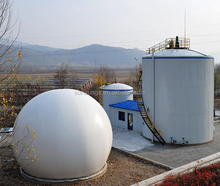 small bio gas systems for power