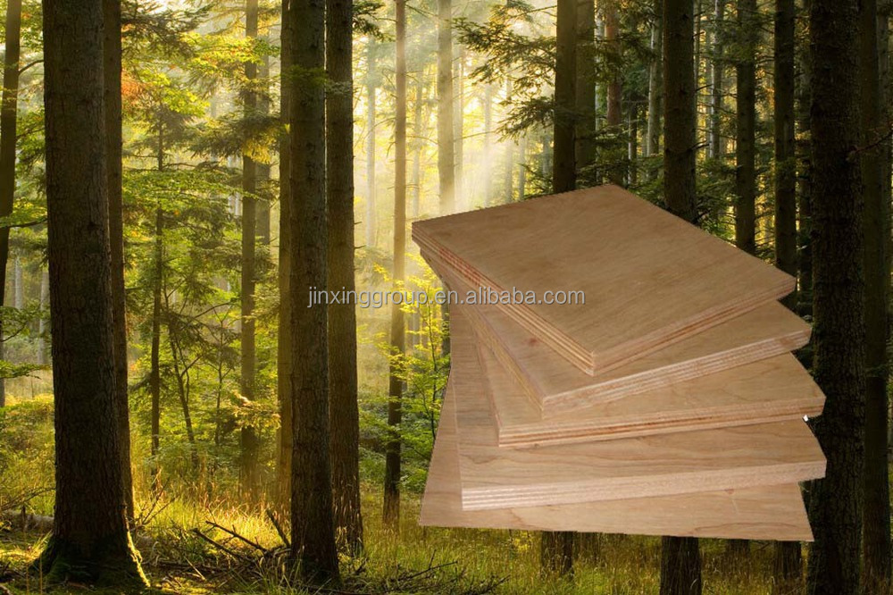 Best Price Bendable Plywood Home Depot Factory Directly