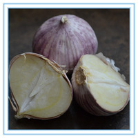 Farm cultivated purple cloves of garlic from China