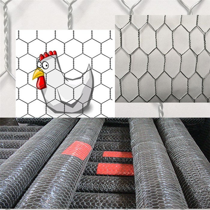 Anping Manufacture Chicken Wire Netting/lowes Chicken Wire Mesh ...