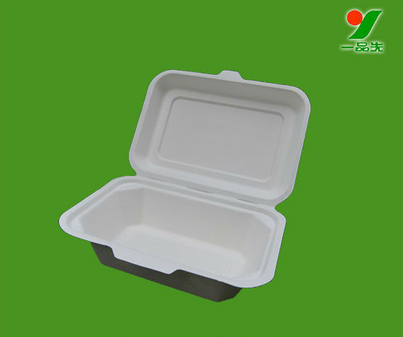 100% Biodegradable and compostable sugarcane pulp packaging disposable paper plate