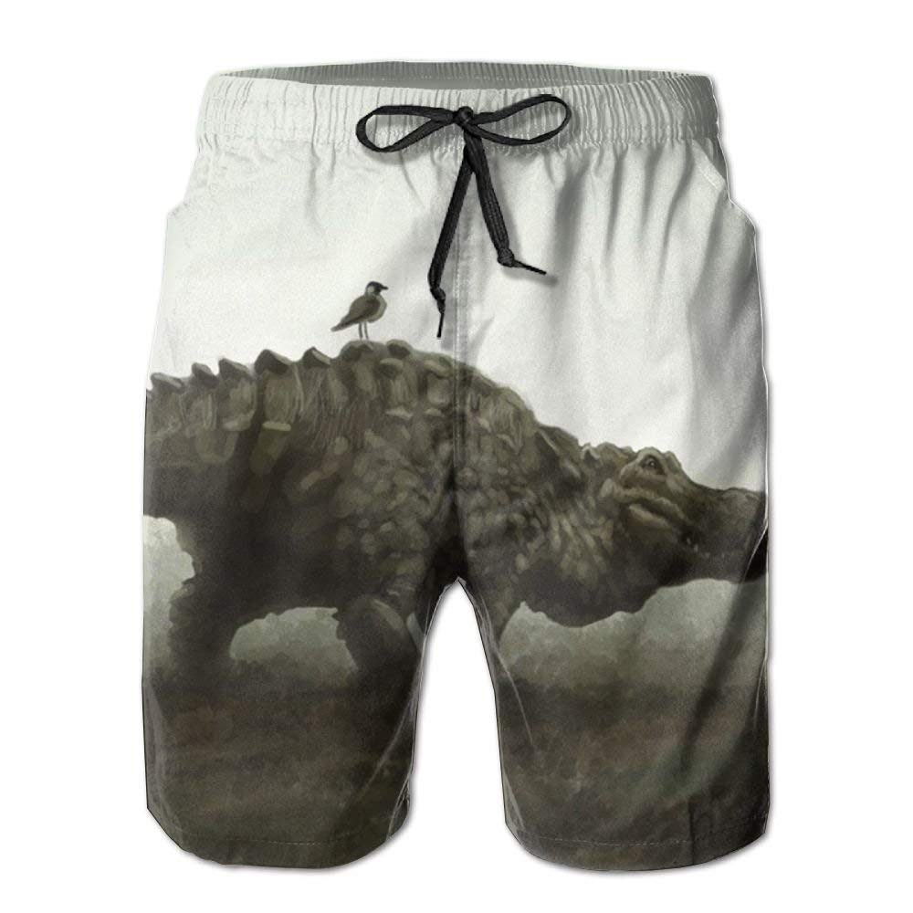 AP.Room Mens Mexican Flag Classic Beach Board Shorts Quick Dry Swim Trunks