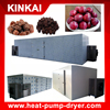 fruit drying machine / drying equipment / meat dryer with beautiful design