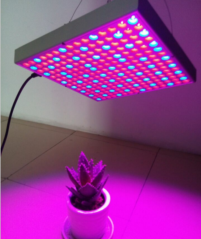 Full Spectrum 14w Hans Panel Led Grow Light
