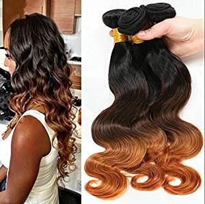 Wigsforyou@Grade 7A Wet And Wavy Virgin Brazilian Virgin Hair Ombre Body Wave 3 Tone Color 1B/4/30 Human Hair Extension Cheap Hair Bundles by Wigsforyou