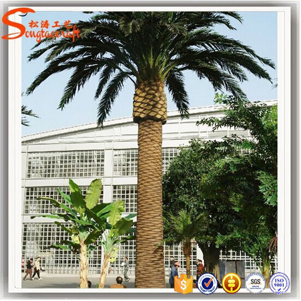 make cheap outdoor artificial date palm tree and tissue culture date palm for sale view date. Black Bedroom Furniture Sets. Home Design Ideas