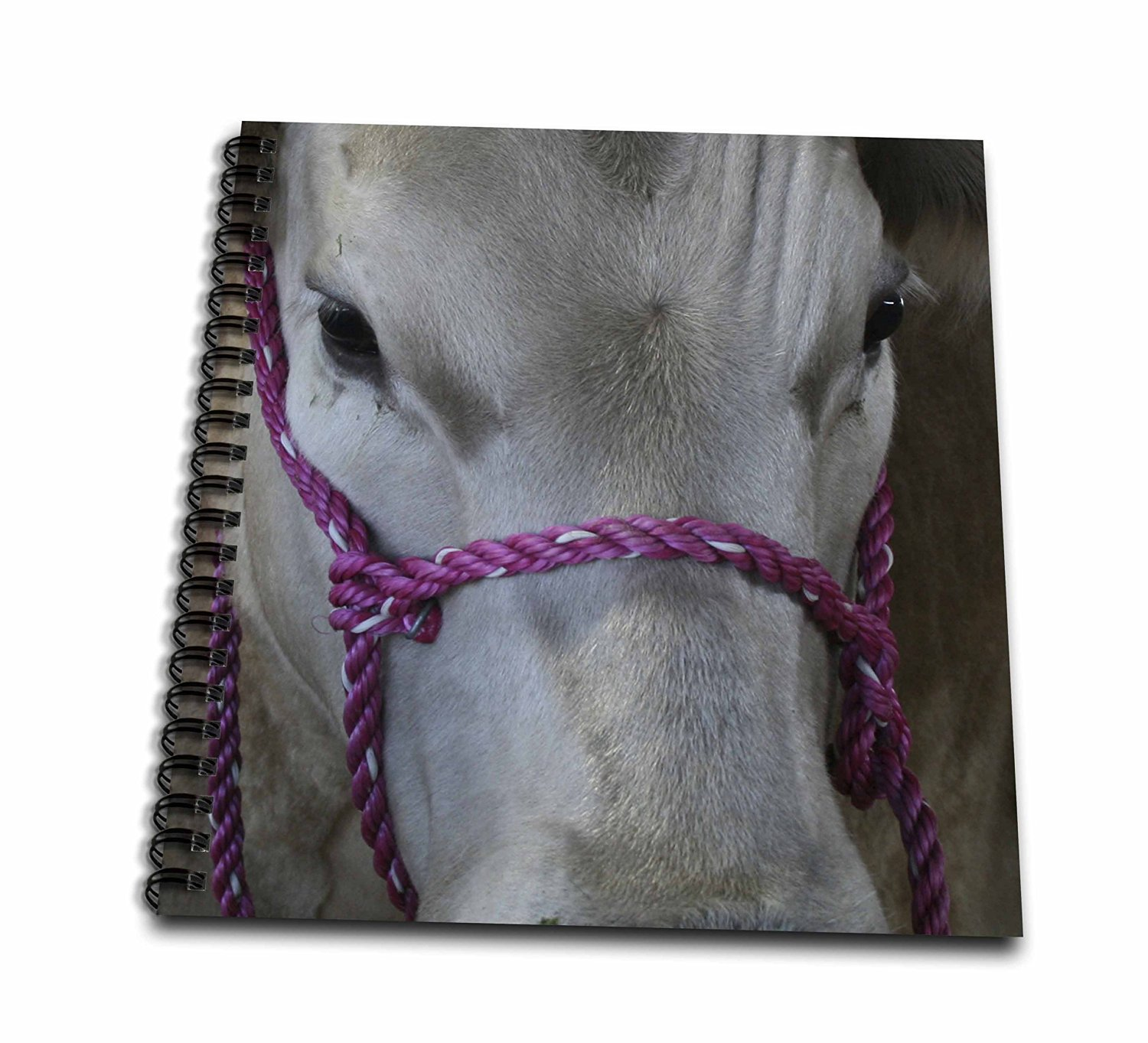 Susans Zoo Crew Animals - white cow pink halter - Memory Book 12 x 12 inch (db_184823_2)