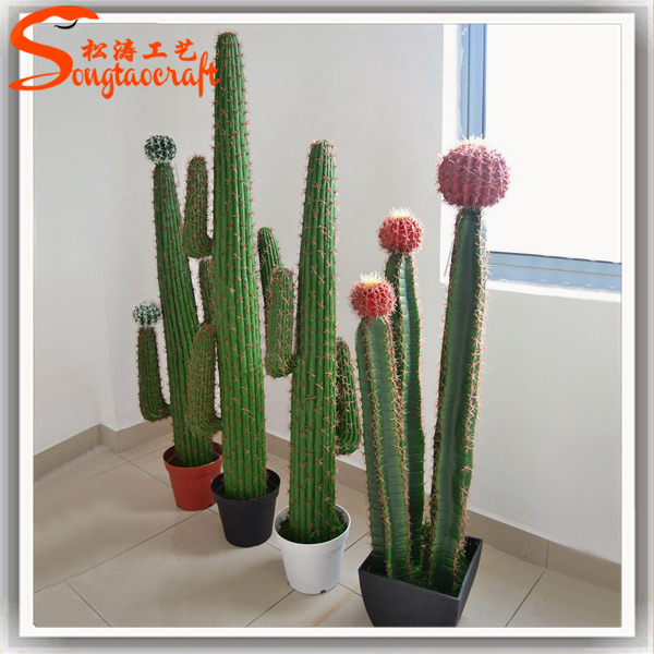 artificial cactus plants tropical names of cactus plants and cafe