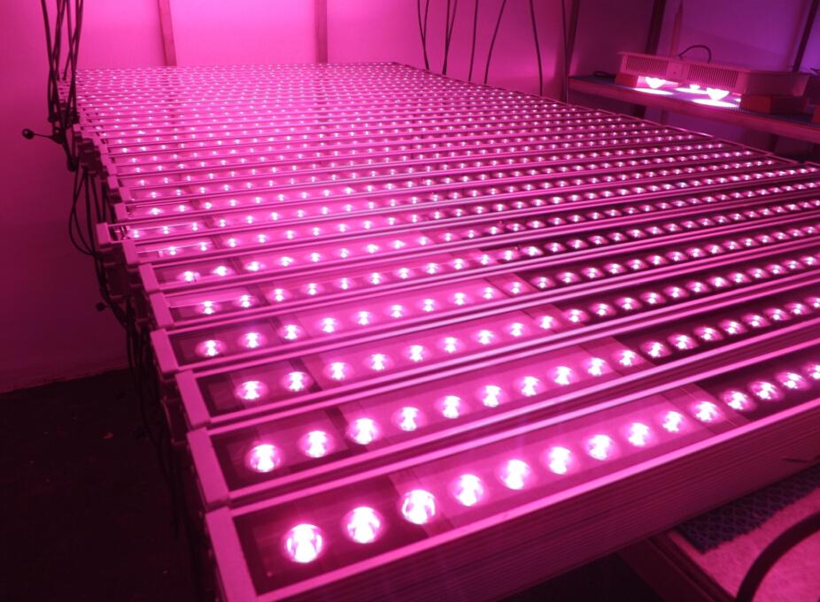 High Par Light!!! For Hydroponic Lettuce,Basil,Microgreens,660nm ...