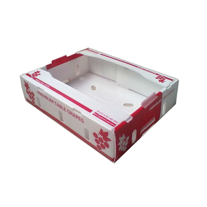 Cor flute PP plastic fruit corrugated boxes for packing orange apple mango
