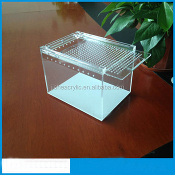 Clear Acrylic Silkworm Feeder Box Reptile Breeding Box Plexiglass