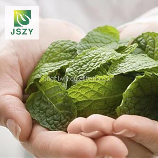 Heathy and natural Xinjiang Dried Mint Leaf Tea, Refined Chinese Herbal Tea - 4uTea | 4uTea.com