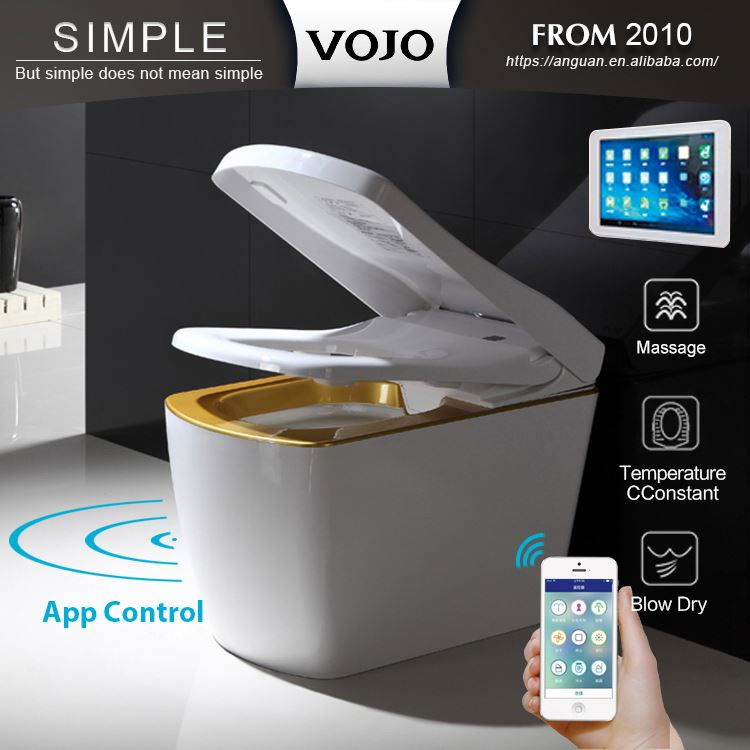 Automatic switch wc toilet and bidet in one