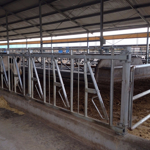 Galvanized cattle fencing panels used cattle headlock for sale