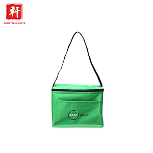 Thermal Lunch Pp Woven Cooler Bag Insulated Lunch For Hot Food