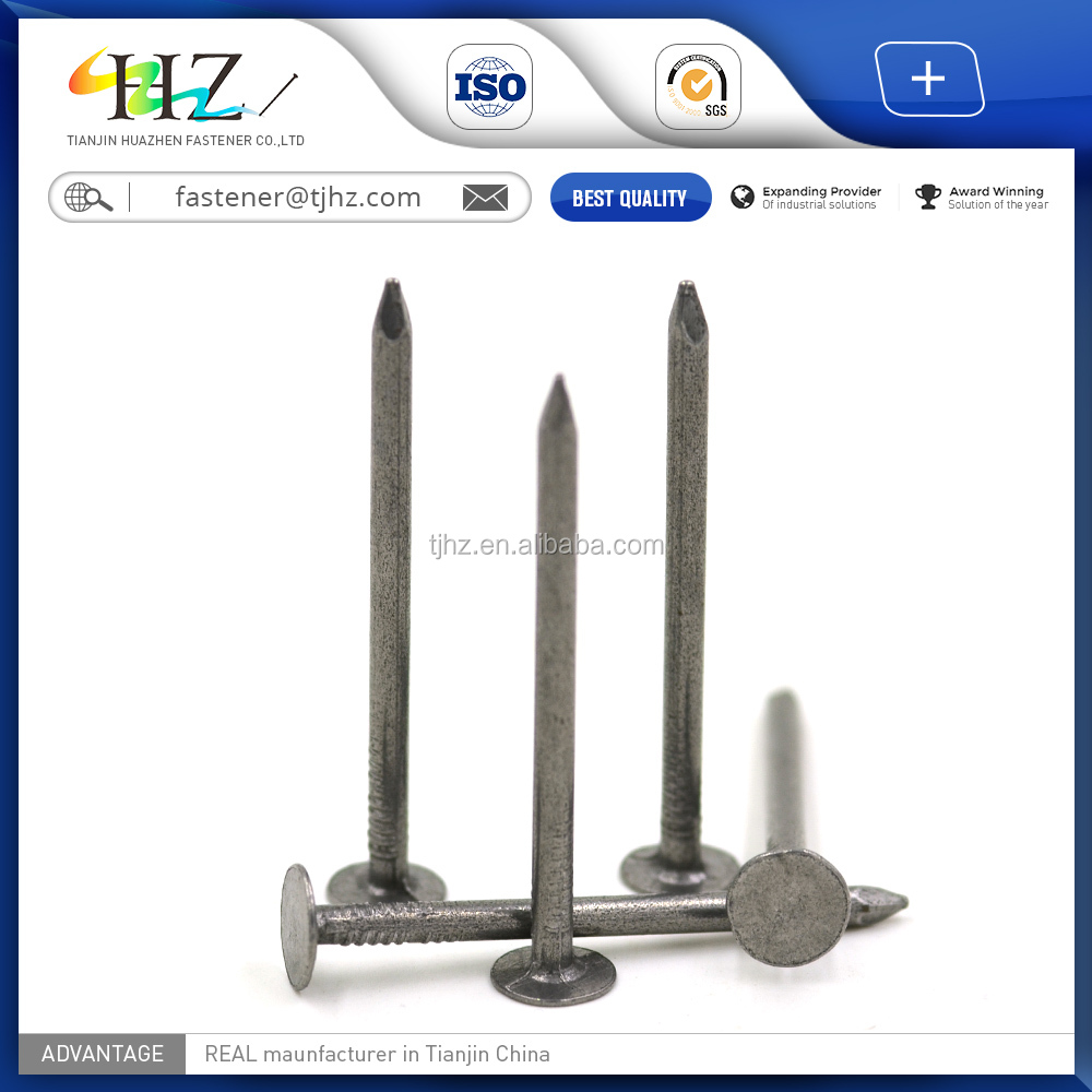 Tianjin Hot fastener HDG roofing nail with different sizes